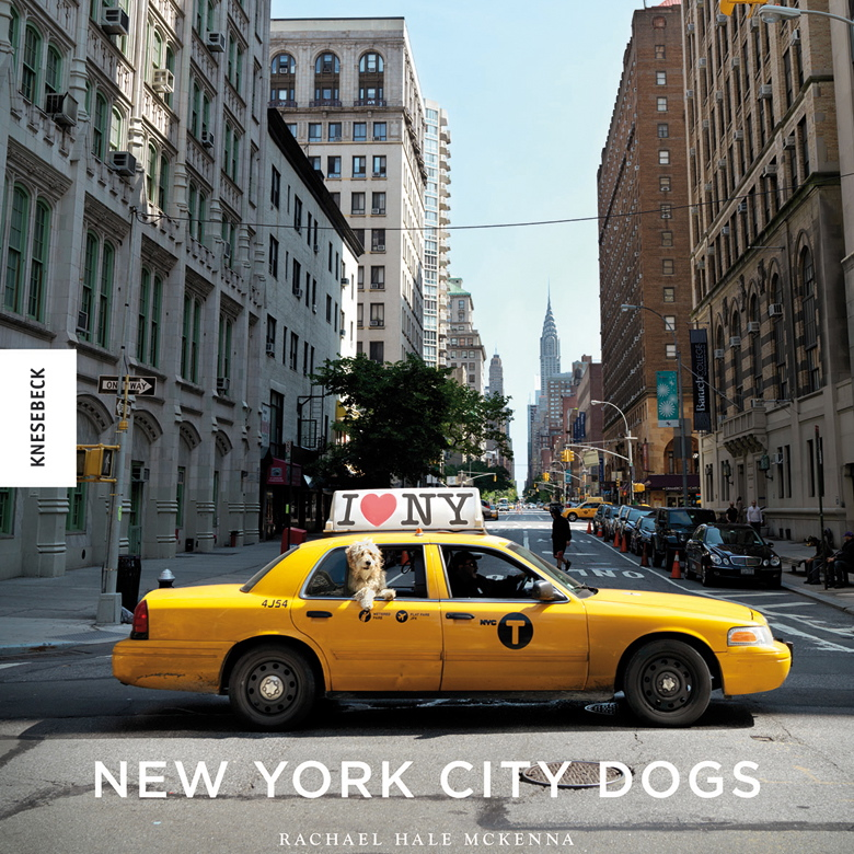 nyc-dogs-buch