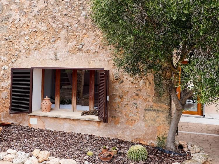 airbnb auf mallorca finca suelovesnyc_susan_fengler_airbnb_finca_mallorca_mieten_santa_eugenia