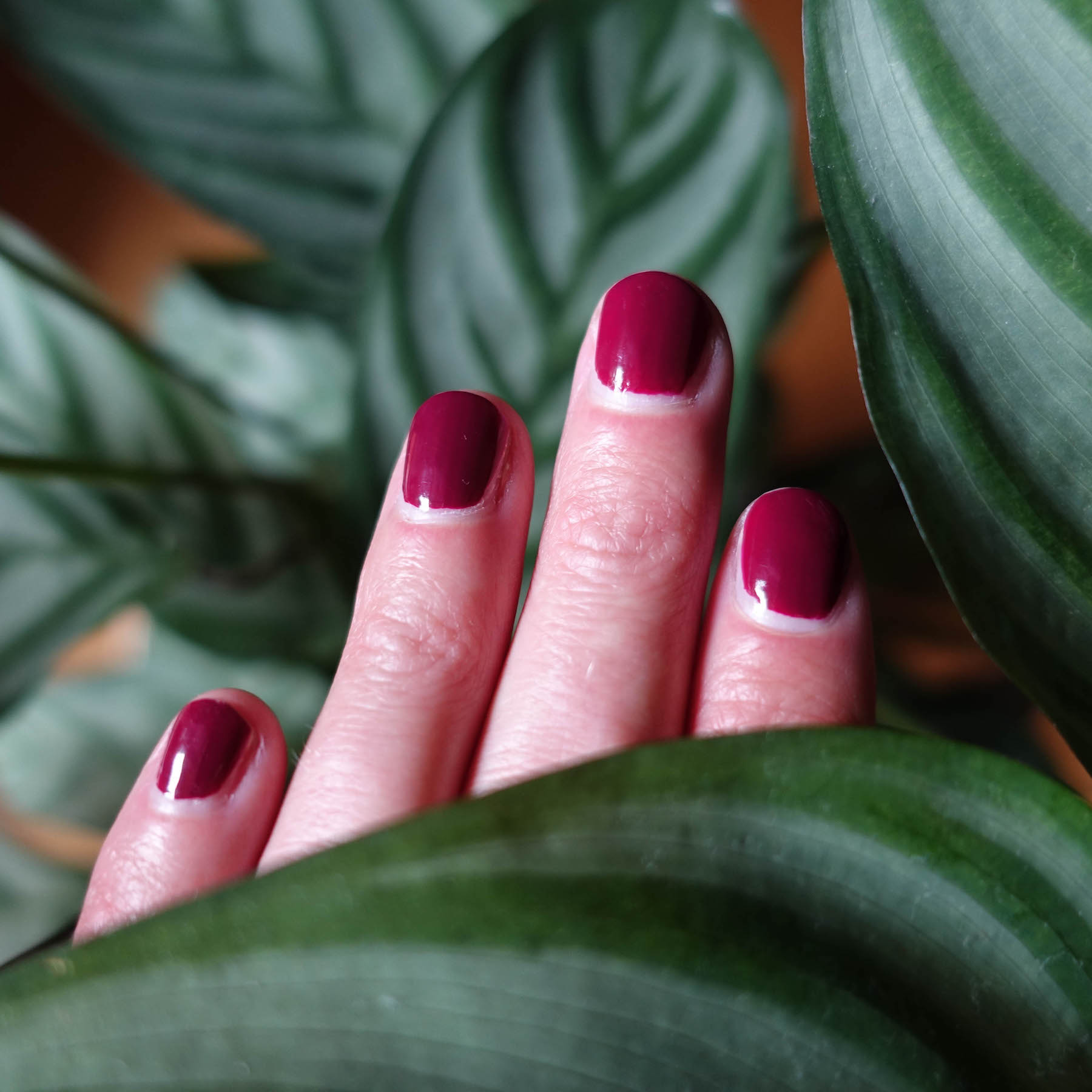Nagellack in Burgund suelovesnyc_susan_fengler_essie_nailed_it_nagellack_trend_farbe_nagellack_in_burgund_1 Essie nailed it