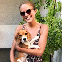 Hunde-Liebe Zeit für mich suelovesnyc_weekly_update_beagle_hunde_liebe_zeit_fur_mich