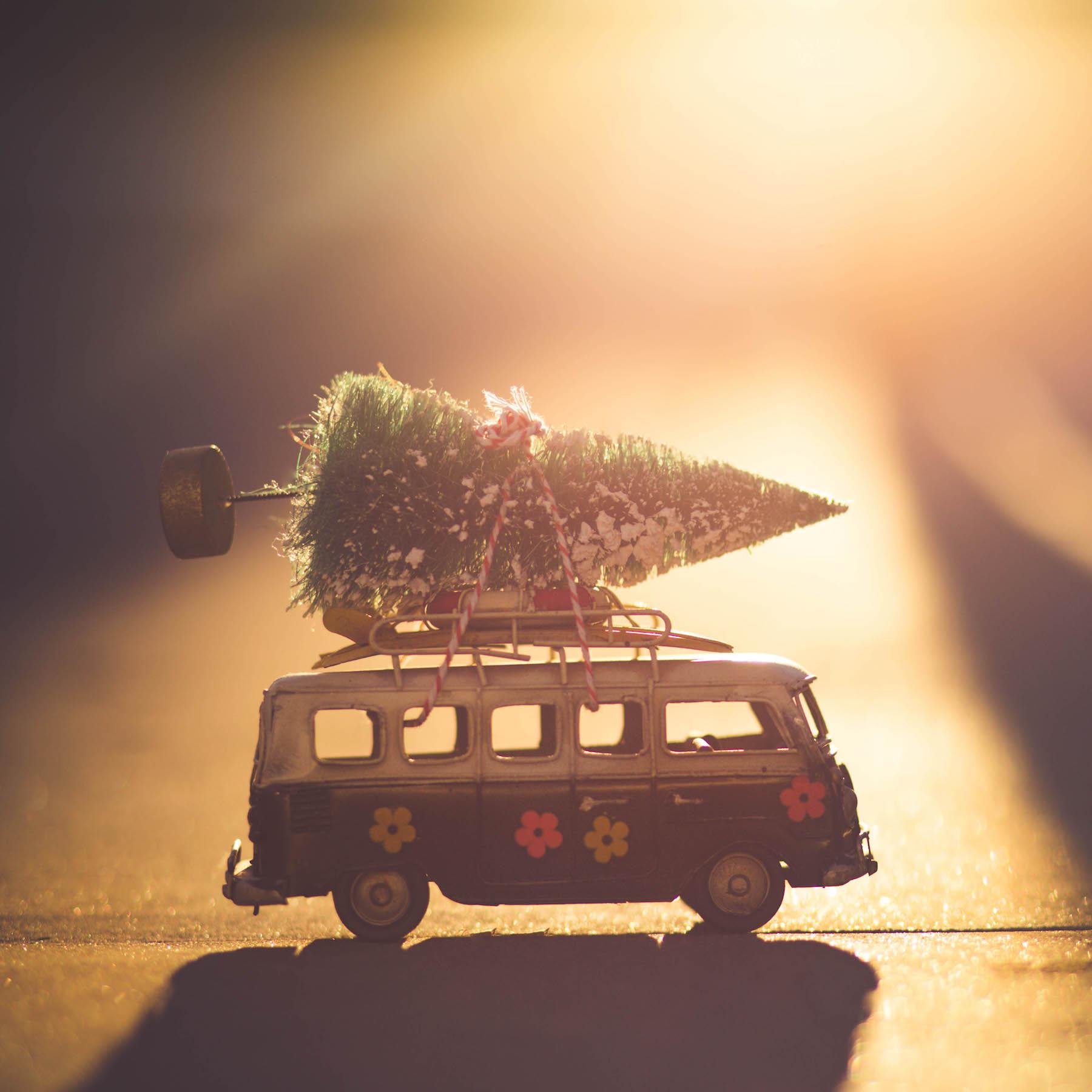 Weihnachtshektik suelovesnyc_weihnachtshektik_weihnachten_blog_kolumne