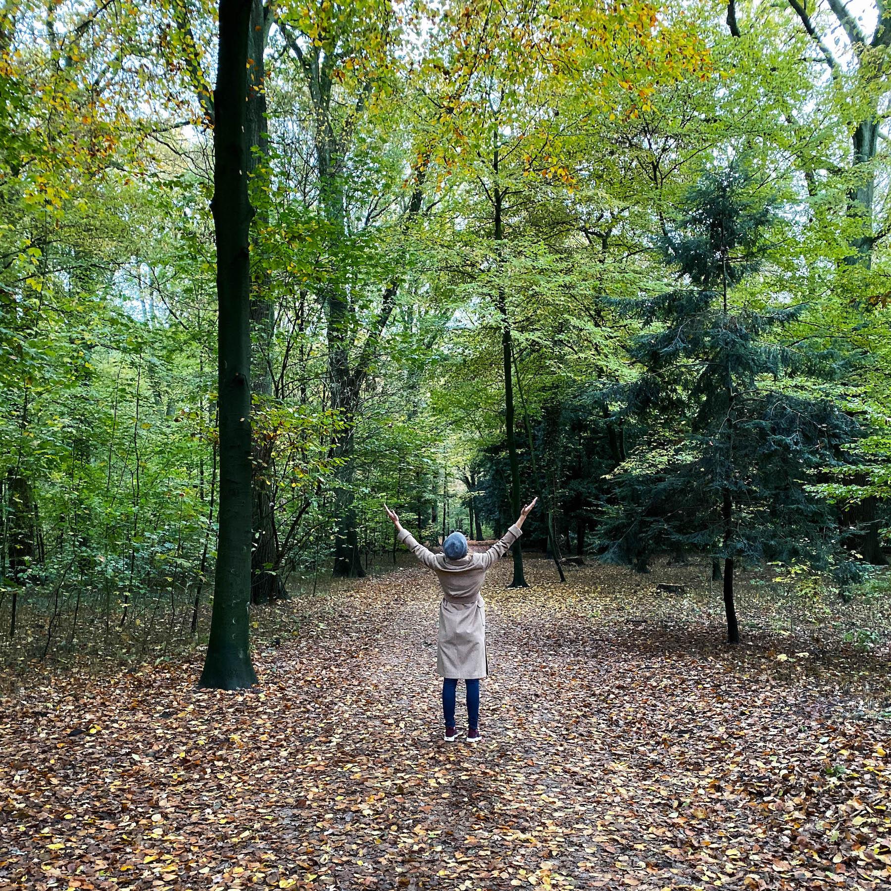 Gründe sich über den Herbst zu freuen suelovesnyc_hamburg_stadtpark_susan_fengler_weekly_update_grunde_sich_uber_den_herbst_zu_freuen