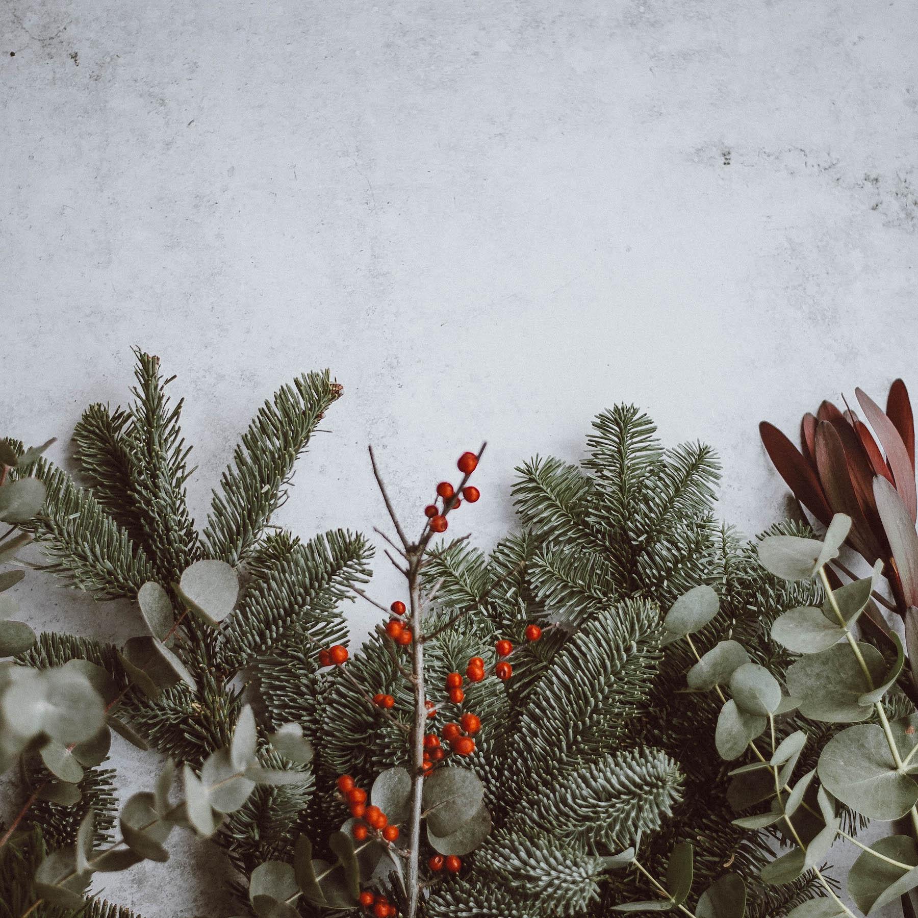 suelovesnyc_weihnachten Weihnachten